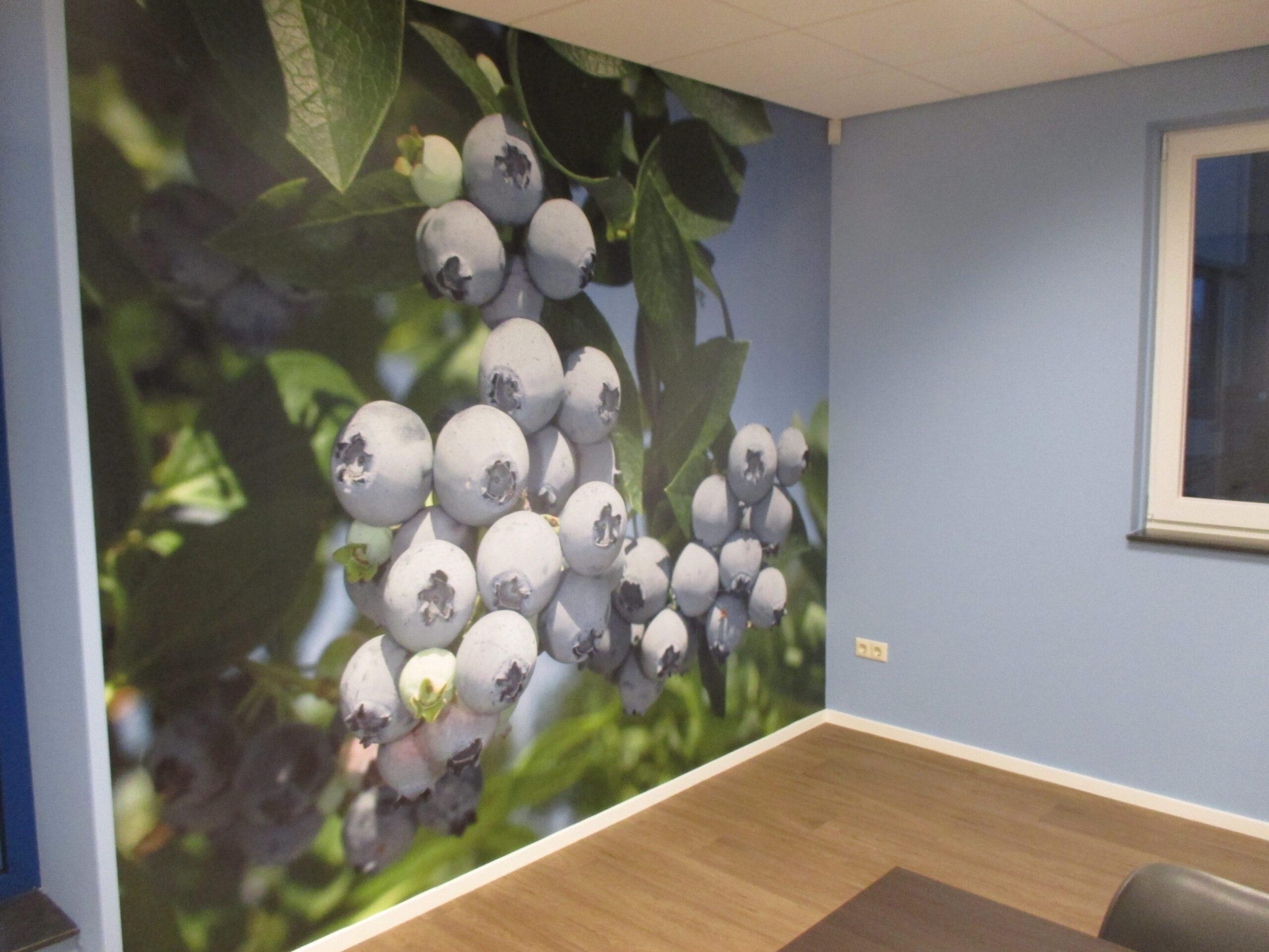 Behangwerken fotobehang kantoor Melderslo-min